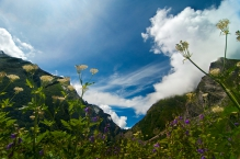 Bhyundar valley
